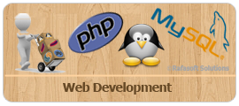 Rafasoft Solutions - Web Development